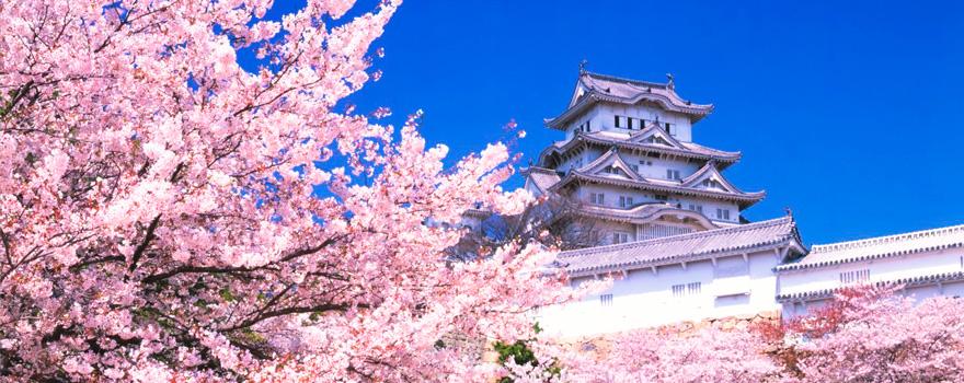 Japon lune de miel