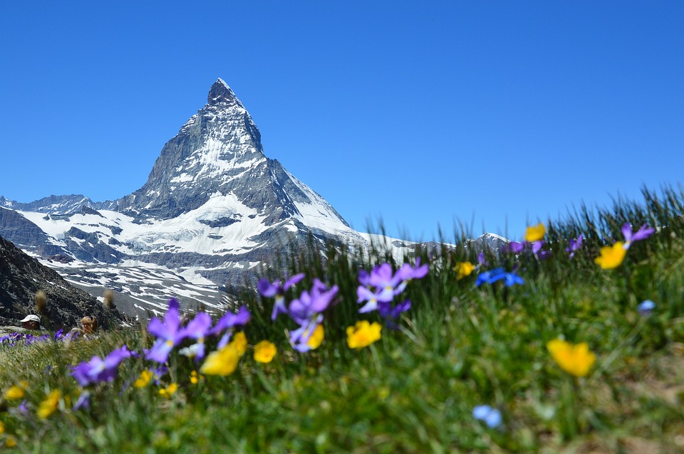 Montagne été