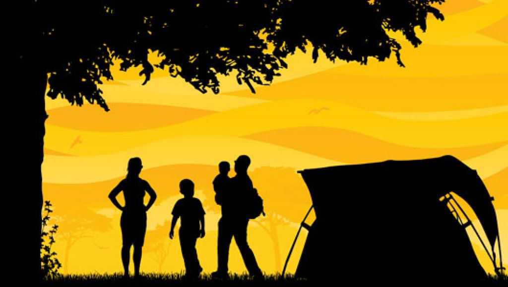 a_vendre_camping_chambres_dhotes_en_retro_littoral_vendee_m701_7480124430873195461 (1)
