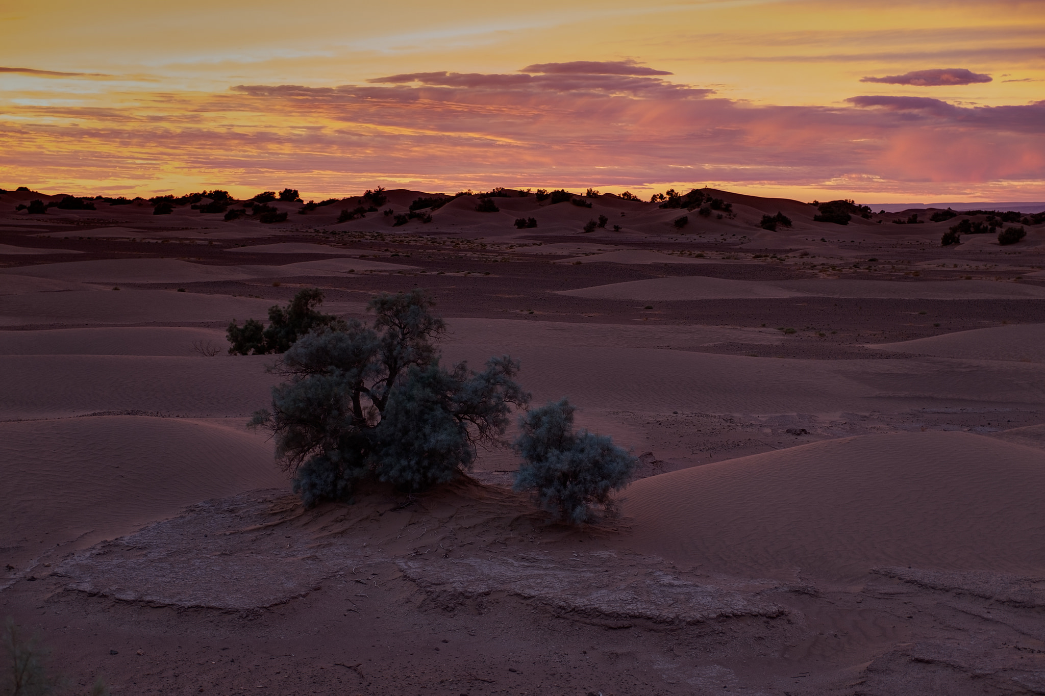 desert-au-maroc