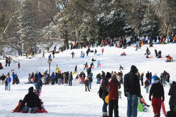 luge central park